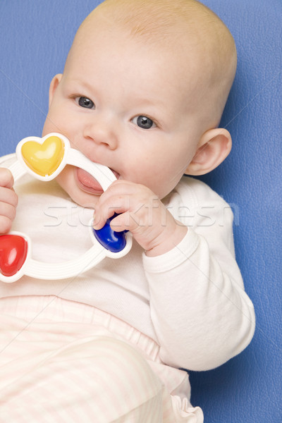 portrait of baby girl with a rattle toy Stock photo © phbcz