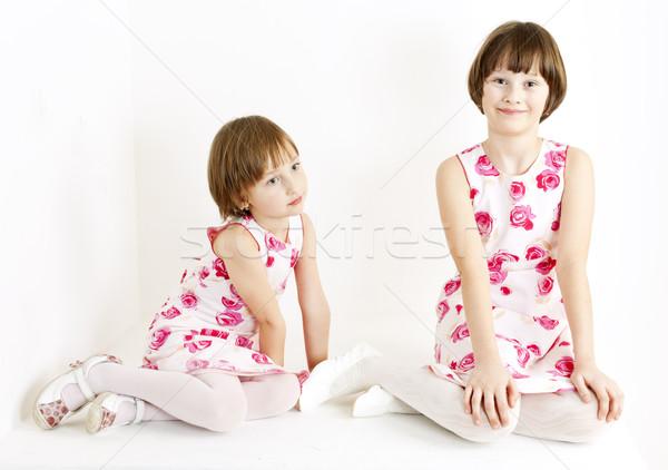 два аналогичный Платья девушки Сток-фото © phbcz