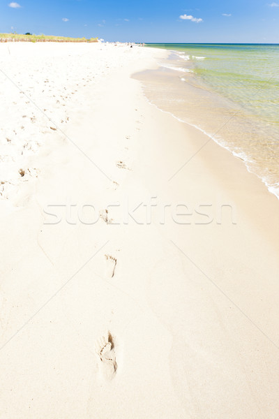footprints on beach, Hel Peninsula, Pomerania, Poland Stock photo © phbcz