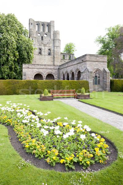 遺跡 修道院 スコットランド 花 建物 ストックフォト © phbcz