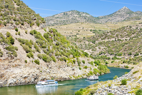 cruise ships in Douro Valley, Portugal Stock photo © phbcz