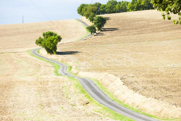 Campo estrada departamento França paisagem planta Foto stock © phbcz