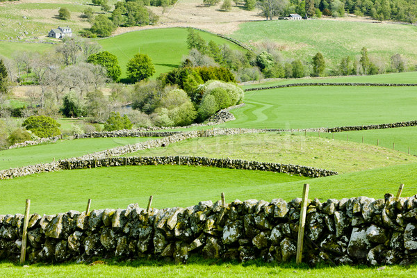 Glen Shee, Highlands, Scotland Stock photo © phbcz