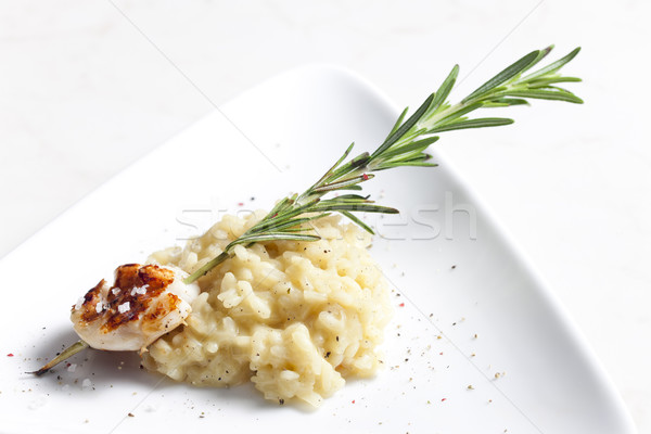 Stock photo: grilled Saint Jacques mollusc on rosemary needle with risotto
