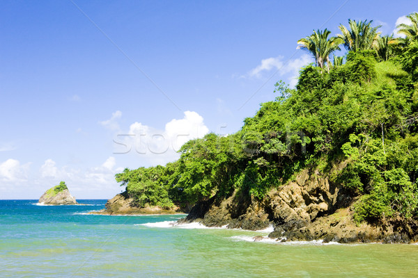 Western coast of Tobago Stock photo © phbcz