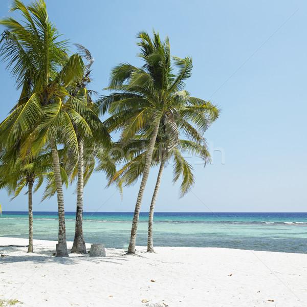Playa Gir Stock photo © phbcz