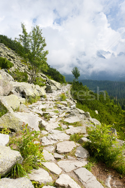 Alto Eslováquia nuvens paisagem parque calçada Foto stock © phbcz