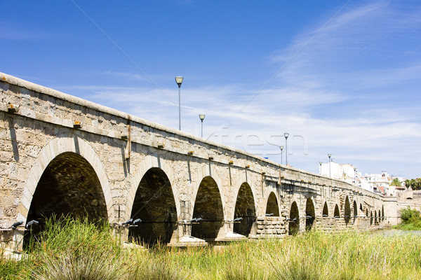 Roman bridge, Merida, Badajoz Province, Extremadura, Spain Stock photo © phbcz