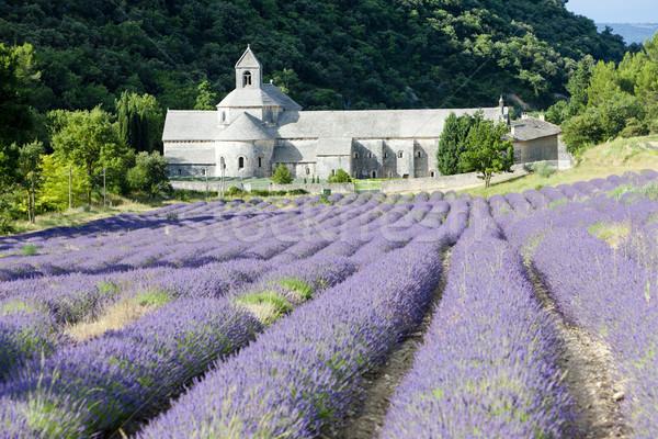 Stockfoto: Abdij · lavendel · veld · Frankrijk · gebouw · veld · architectuur
