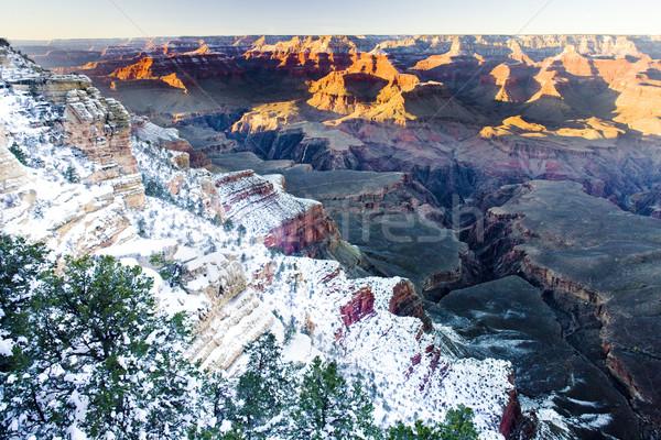 Grand Canyon park tél Arizona USA tájkép Stock fotó © phbcz
