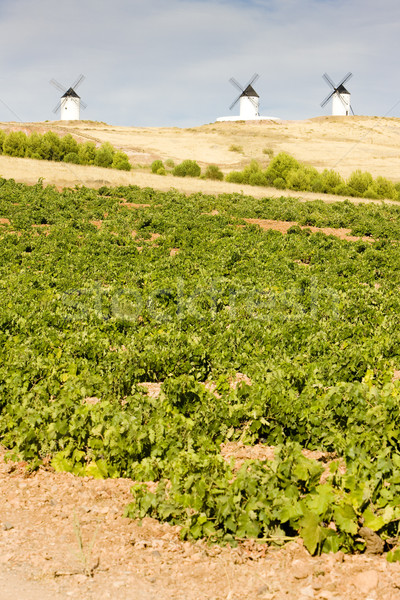 windmills with vineyard, Alcazar de San Juan, Castile-La Mancha, Stock photo © phbcz