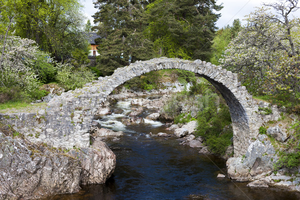 Old Packhorse bridge, Carrbridge, Highlands, Scotland Stock photo © phbcz