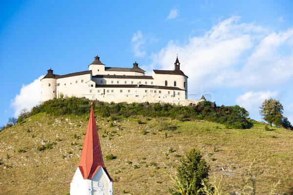 Kasteel Slowakije architectuur Europa geschiedenis toren Stockfoto © phbcz