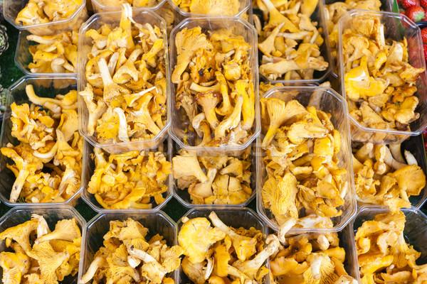 Stock photo: chanterelles, market in Forcalquier, Provence, France