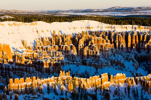 Kanyon park kış Utah ABD manzara Stok fotoğraf © phbcz