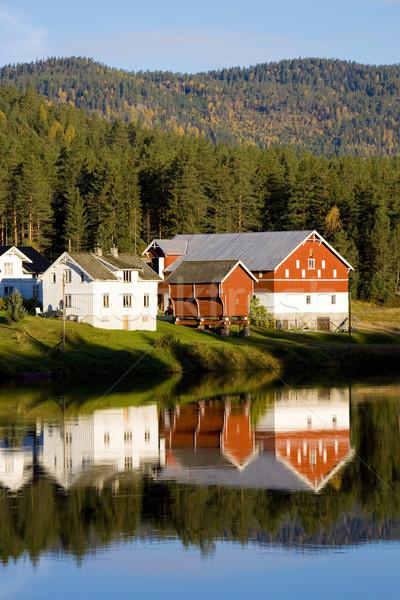 countryside, Norway Stock photo © phbcz