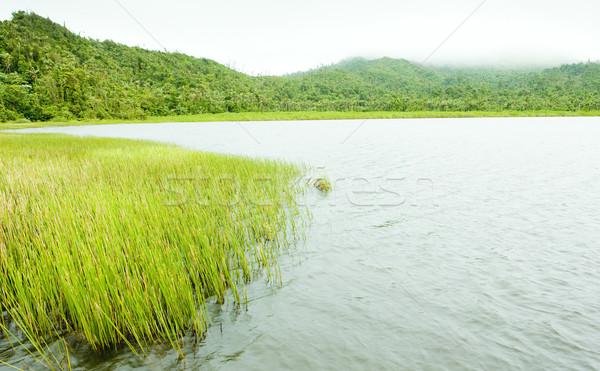 Göl park Grenada manzara bitkiler Amerika Stok fotoğraf © phbcz