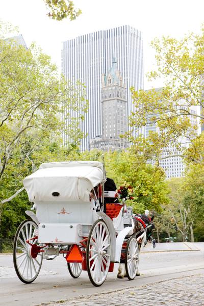 キャリッジ セントラル·パーク ニューヨーク市 米国 建物 アーキテクチャ ストックフォト © phbcz
