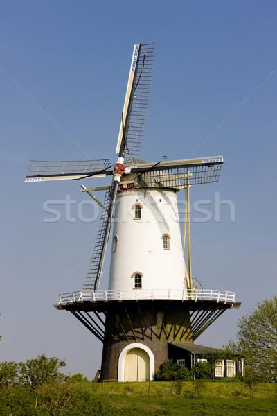 Molino de viento Países Bajos edificio viaje arquitectura molino Foto stock © phbcz