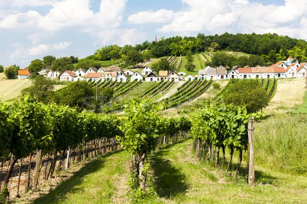 wine cellars with vineyards, Galgenberg, Lower Austria, Austria Stock photo © phbcz
