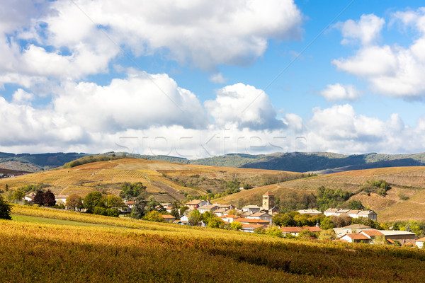 village Salles-Arbuissonnas-en-Beaujolais with vineyard, Rhone-A Stock photo © phbcz