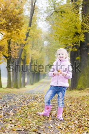 little girl holding a vane Stock photo © phbcz