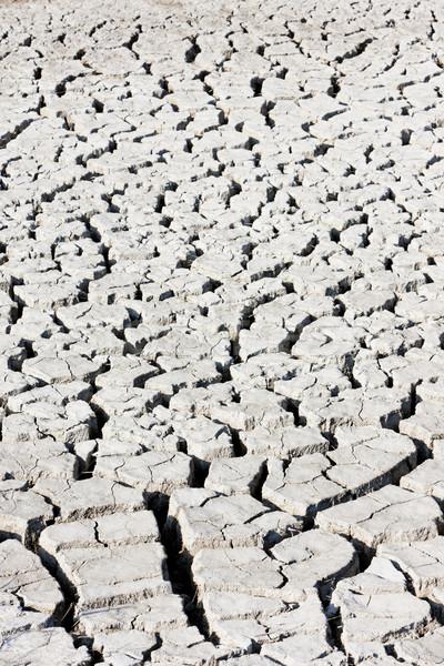 土壌 フランス 自然 屋外 ストックフォト © phbcz