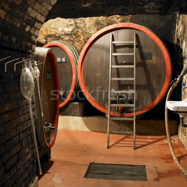 Stock photo: wine cellar, Litomerice, Czech Republic