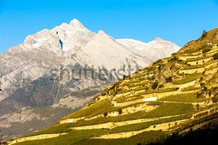 Bölge İsviçre manzara kar seyahat dağlar Stok fotoğraf © phbcz