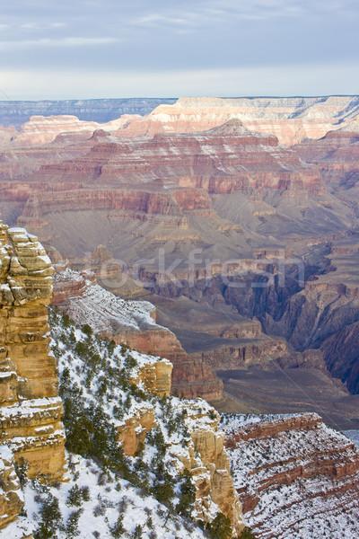 グランドキャニオン 公園 冬 アリゾナ州 米国 風景 ストックフォト © phbcz