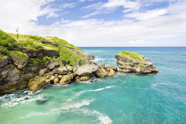 Барбадос Карибы пейзаж морем путешествия рай Сток-фото © phbcz