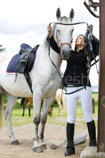 equestrian with horse Stock photo © phbcz