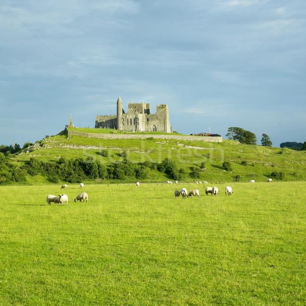 Stock photo: Rock of Cashel, County Tipperary, Ireland
