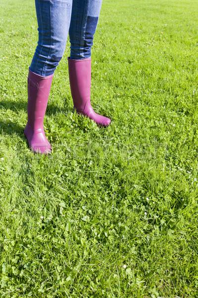 詳細 女性 着用 芝生 草 ストックフォト © phbcz