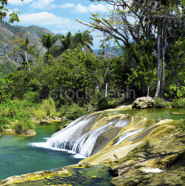 El Nicho waterfall, Cienfuegos Province, Cuba Stock photo © phbcz