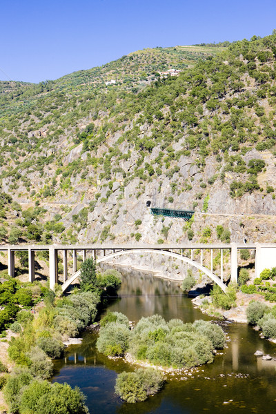 railway and road viaducts in Douro Valley, Portugal Stock photo © phbcz