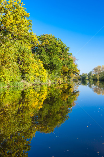 Ohre river in autumn, Czech Republic Stock photo © phbcz