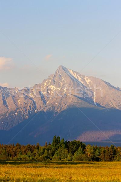 Alto Eslováquia paisagem montanhas parque silêncio Foto stock © phbcz