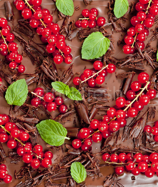 red currant and mint with chocolate Stock photo © phbcz