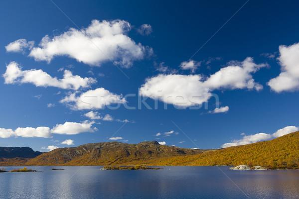 Paisaje meridional Noruega nubes lago otono Foto stock © phbcz
