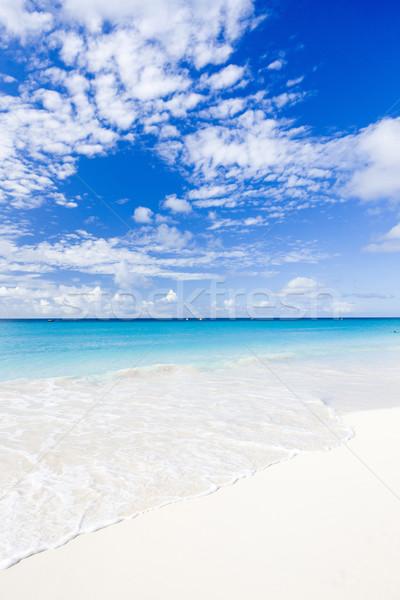 ビーチ バルバドス カリビアン 雲 風景 ストックフォト © phbcz