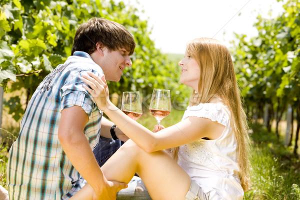 Pár piknik szőlőskert nő férfi üveg Stock fotó © phbcz