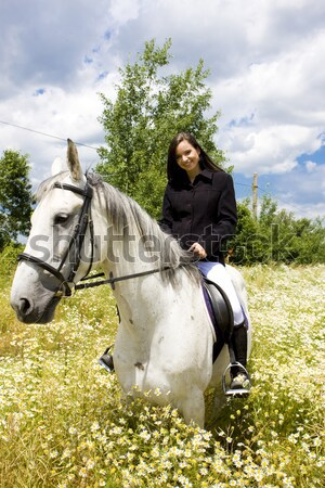 equestrian on horseback Stock photo © phbcz