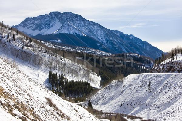 San juan dağlar Colorado ABD kış manzara Stok fotoğraf © phbcz