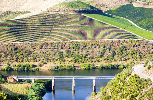 railway viaduct in Douro Valley, Portugal Stock photo © phbcz