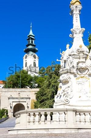 the plague column in Nitra, Slovakia Stock photo © phbcz