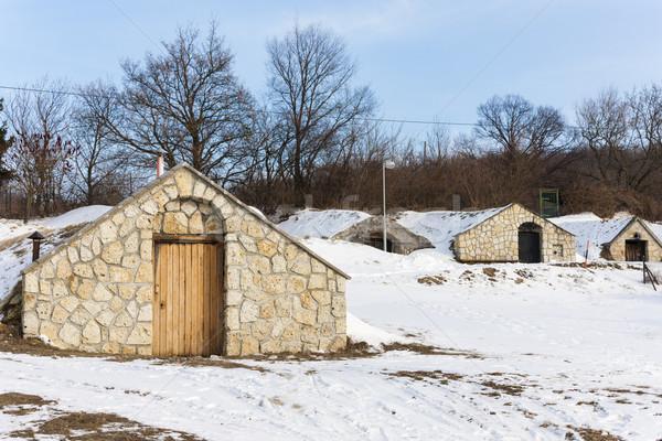 вино Словакия здании снега зима деревне Сток-фото © phbcz