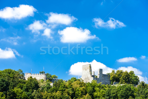 ruins of Cornstejn Castle, Czech Republic Stock photo © phbcz