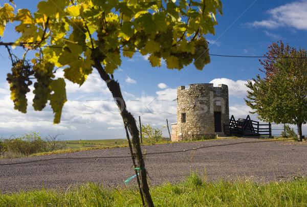 Lampelberg castle, Czech Republic Stock photo © phbcz