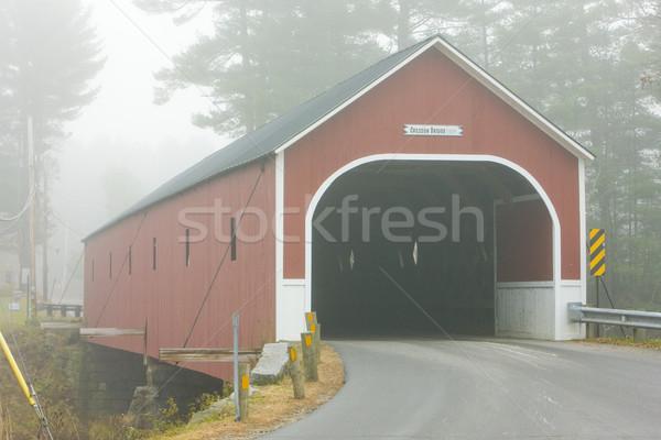 Kapalı köprü New Hampshire ABD seyahat binalar Stok fotoğraf © phbcz
